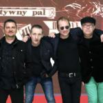 Sztywny Pal Azji • Gorzów Wielkopolski • 12.11.2020